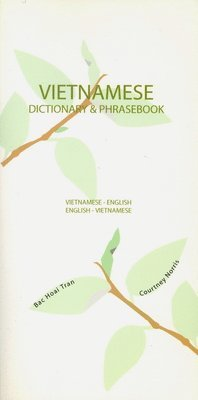 bokomslag Vietnamese-English/English-Vietnamese Dictionary & Phrasebook