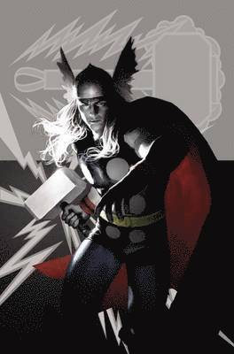 bokomslag Avengers: Mythos