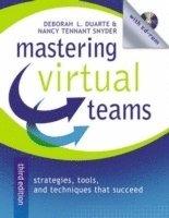 bokomslag Mastering Virtual Teams