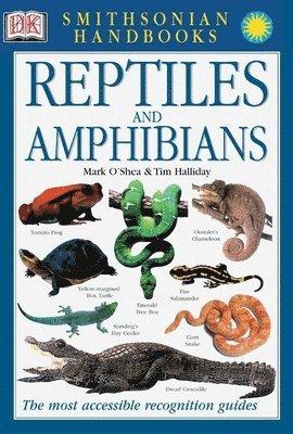 bokomslag Reptiles and Amphibians