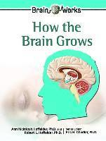 bokomslag How the Brain Grows