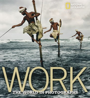 bokomslag Work : the world in photographs