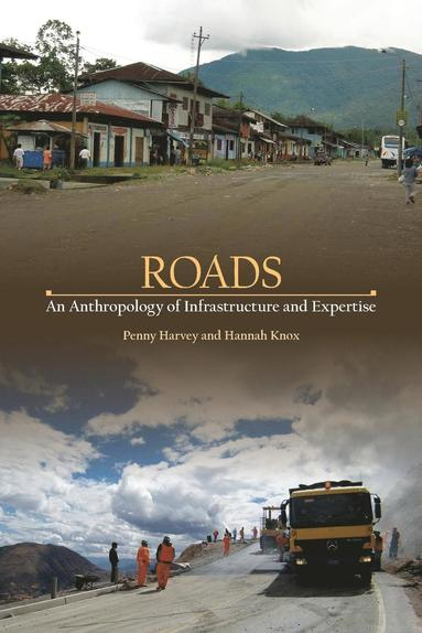 bokomslag Roads - an anthropology of infrastructure and expertise