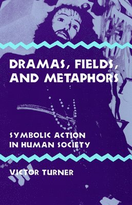 bokomslag Dramas, Fields, and Metaphors