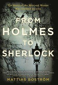 bokomslag From Holmes to Sherlock