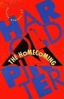 bokomslag The Homecoming