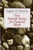 bokomslag Five Smooth Stones for Pastoral Work