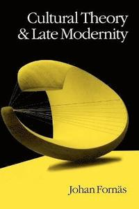 bokomslag Cultural Theory and Late Modernity