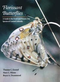 bokomslag Florissant Butterflies