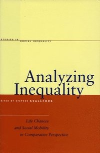 bokomslag Analyzing Inequality