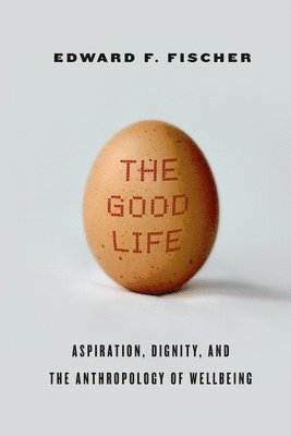 bokomslag Good life - aspiration, dignity, and the anthropology of wellbeing