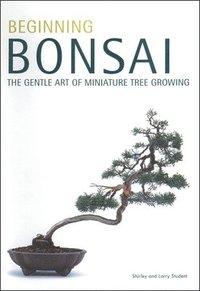 bokomslag Beginning Bonsai