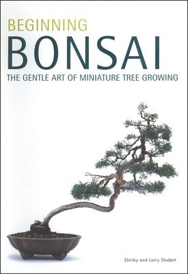 bokomslag Beginning Bonsai