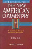 bokomslag New American Commentary