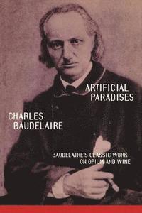 bokomslag Artificial Paradises