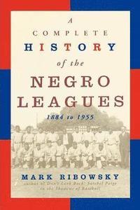 bokomslag Comp.Hist.Negro Leg-P