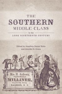 bokomslag The Southern Middle Class in the Long Nineteenth Century