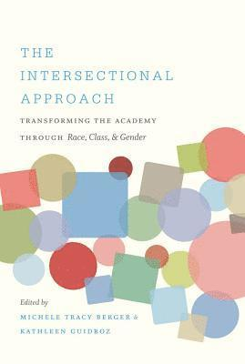 bokomslag The Intersectional Approach