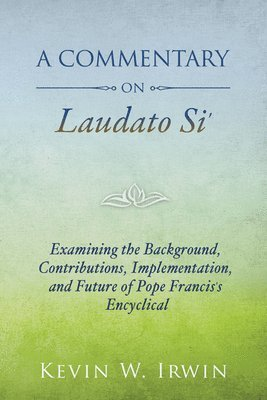 bokomslag Commentary on laudato si - examining the background, contributions, impleme
