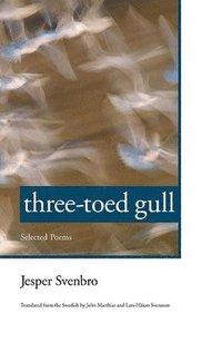 bokomslag Three-toed Gull