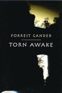 bokomslag Torn Awake