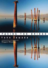 bokomslag Facing the Bridge