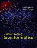 bokomslag Understanding Bioinformatics