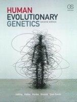 bokomslag Human Evolutionary Genetics
