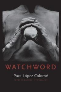 bokomslag Watchword