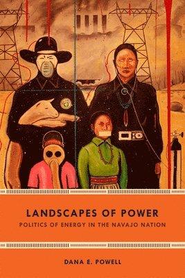 bokomslag Landscapes of Power