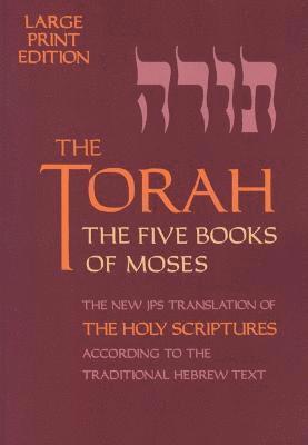 bokomslag The Torah