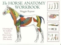 bokomslag Horse Anatomy Workbook
