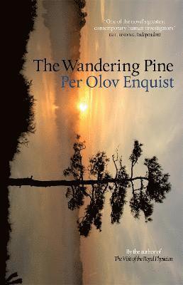 bokomslag The Wandering Pine