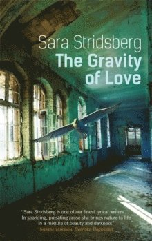 bokomslag The Gravity of Love