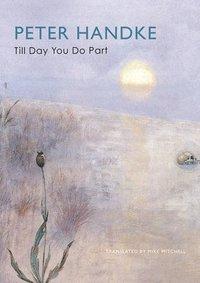 bokomslag Till Day You Do Part: Or a Question of Light