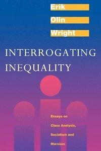 bokomslag Interrogating Inequality