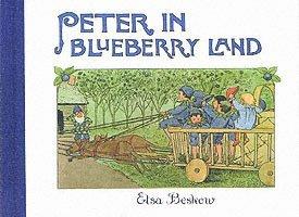 bokomslag Peter in Blueberry Land