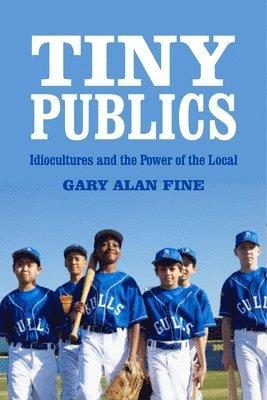 bokomslag Tiny Publics