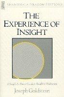 bokomslag The Experience Of Insight