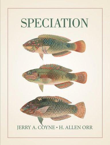 bokomslag Speciation