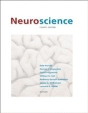 bokomslag Neuroscience