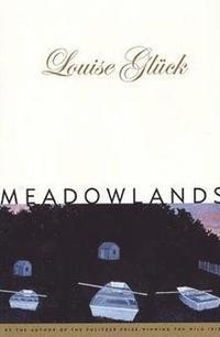 bokomslag Meadowlands (Paper)