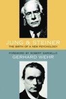 bokomslag Jung and Steiner
