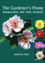 bokomslag The Gardener's Peony