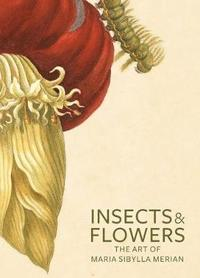 bokomslag Insects and Flowers - The Art of Maria Sibylla Merian
