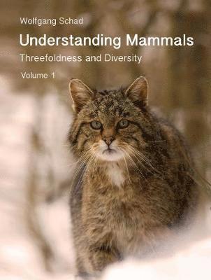 bokomslag Understanding Mammals