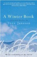 bokomslag A Winter Book