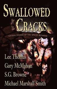 bokomslag Swallowed By The Cracks