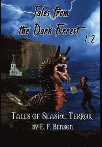 bokomslag Tales from the Dark Forrest 1 - 4