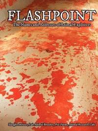 bokomslag Flashpoint